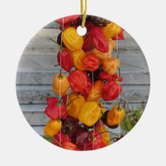 Assortment of colorful chilli peppers ceramic ornament