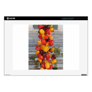 Assortment of colorful chilli peppers decal for laptop