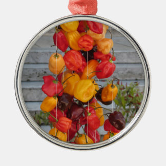 Assortment of colorful chilli peppers metal ornament