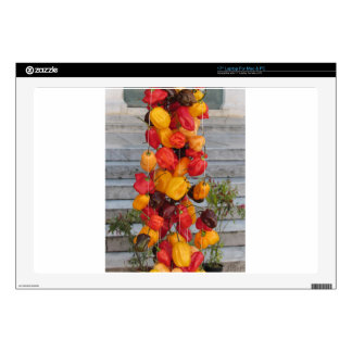 Assortment of colorful chilli peppers skins for laptops