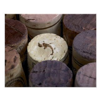 Assortment of used corks, macro. The corks have Poster