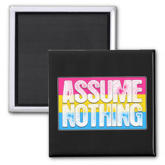 Assume Nothing Pansexual Pride Flag Magnet