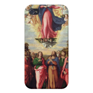 Assumption of the Virgin iPhone 4/4S Cases