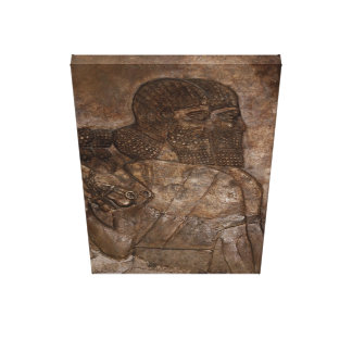 Assyrian Soldiers Canvas Print