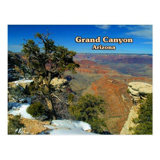 Asta de bandera Arizona del Gran Cañón Tarjetas Postales