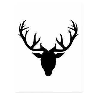 Astas de los ciervos postal