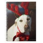 Astas del reno del perro que llevan spiral notebook
