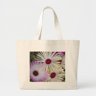 aster canvas bags
