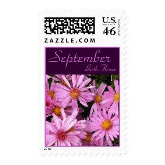 Aster Birth Flower Postage Stamps - SEPTEMBER