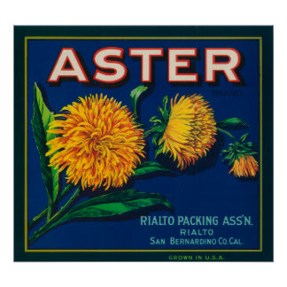 Aster Brand Citrus Crate Label Poster