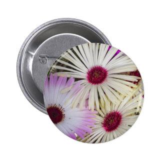 aster 2 inch round button