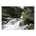 Aster Creek at Glacier National Park Card