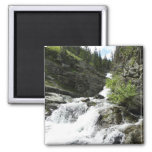 Aster Creek at Glacier National Park Magnet