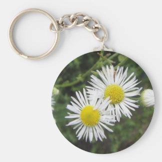 Aster Daisies Keychain