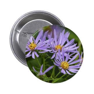 Aster Flower Pinback Button