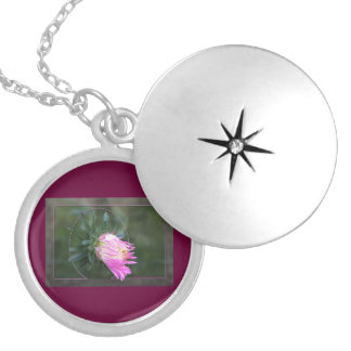 Aster Giants of California Silver Plated Necklace