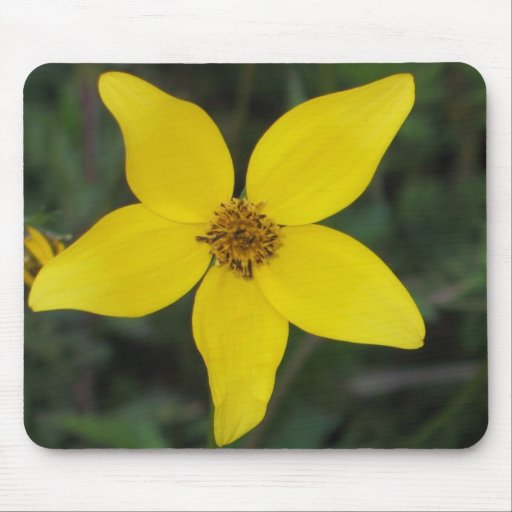 Aster Mouse Pad