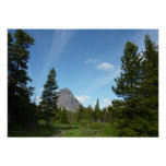Aster Park Trail at Glacier National Park Poster