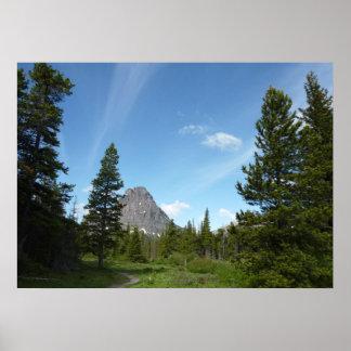 Aster Park Trail at Glacier National Park Poster