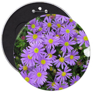 Aster Purple Yellow Green Pinback Buttons