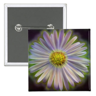 Aster Tataricus Flower With Energy Aura Buttons