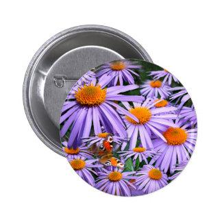 Aster tongolensis 'Berggarten' Pinback Buttons