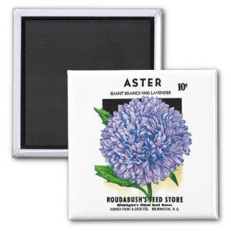 Aster Vintage Seed Packet Refrigerator Magnets