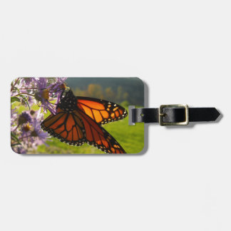 Aster Visitor Bag Tag