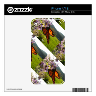 Aster Visitor iPhone 4 Decals
