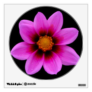 Asteraceae Wall Decal