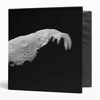 Asteroid 243 Ida Binder
