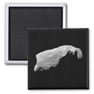 Asteroid 243 Ida Magnet