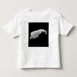 Asteroid 243 Ida Toddler T-shirt