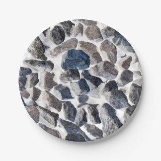 "Asteroids Paper Plates 7"""