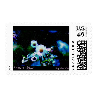 Asters Aglow Postage Stamps
