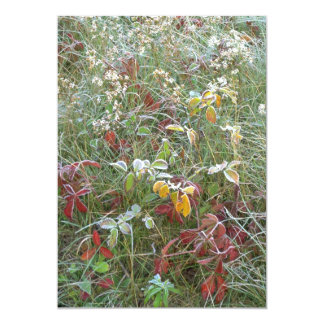 """Asters, agrimony and hoar-frost 5"""" x 7"""" invitation card"""