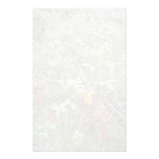 Asters, agrimony and hoar-frost stationery