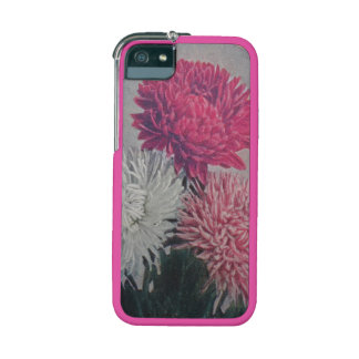 Asters iPhone 5/5S Covers