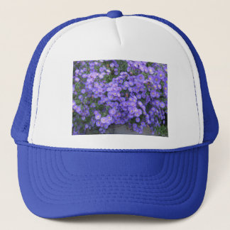 Asters in the Fall Perenial Garden - photo Trucker Hat