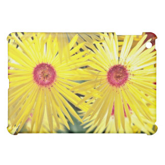 Asters Pink flowers iPad Mini Cover
