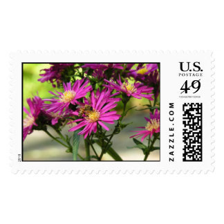 """Asters With A Bee"" Stamp"