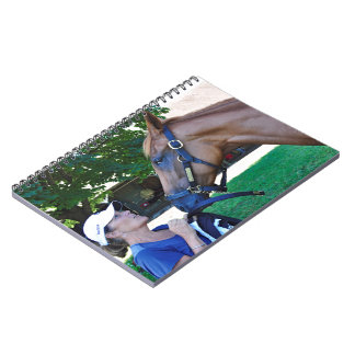 Asticou Trail 2yr-old Notebook
