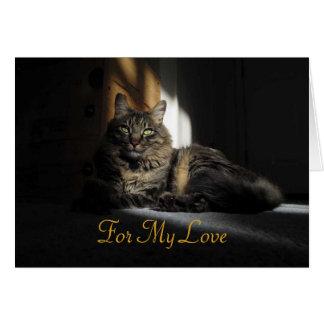 Astillas del gato de Kimber de la tarjeta del aniv