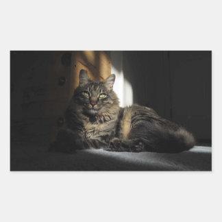 Astillas del gato de Kimber de los pegatinas de la Rectangular Altavoces
