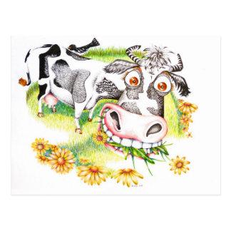 Astonished cartoon cow grazing on flowers postcard