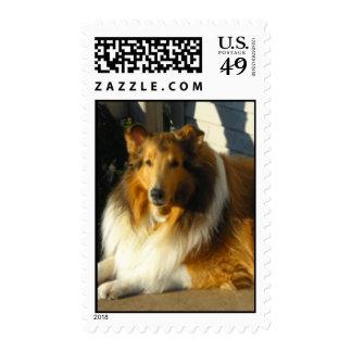 astro - Customized Postage