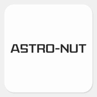 Astro-nut Square Sticker