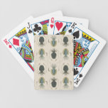 Astrolabe Molluscs Bicycle Poker Cards