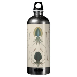 Astrolabe Molluscs (green) Aluminum Water Bottle
