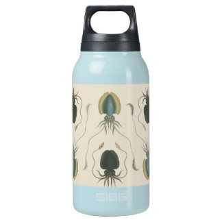 Astrolabe Molluscs (green) Insulated Water Bottle